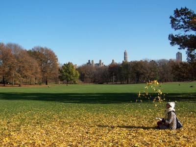Colores de otoño: Central Park
