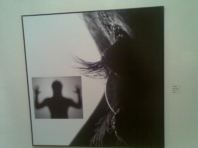 Las fotografías...